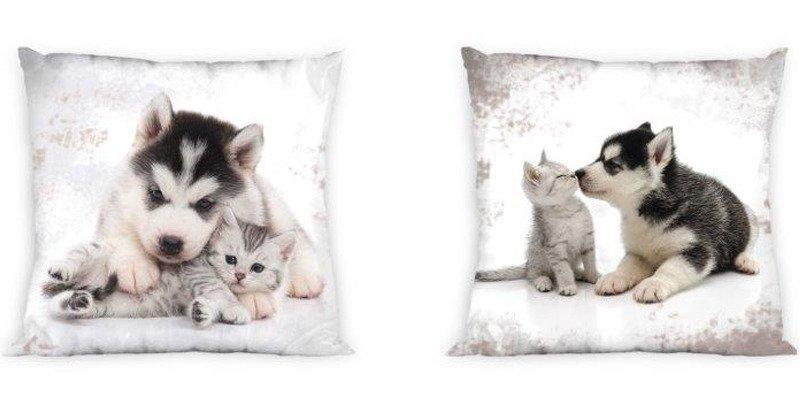 7dcdc5c4f Obojstranná Obliečka na Vankúš Best Friends 002 Mačka a Pes 40x40 cm ...